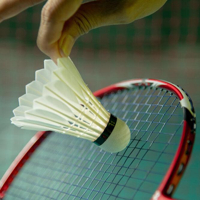 Badminton symbol
